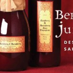 Berry Juice Dessert Sauce