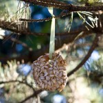 homemade-bird-feeder-craft-400x400a