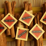 cinnamon-sachet-490x310