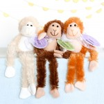 monkey-adoption-3
