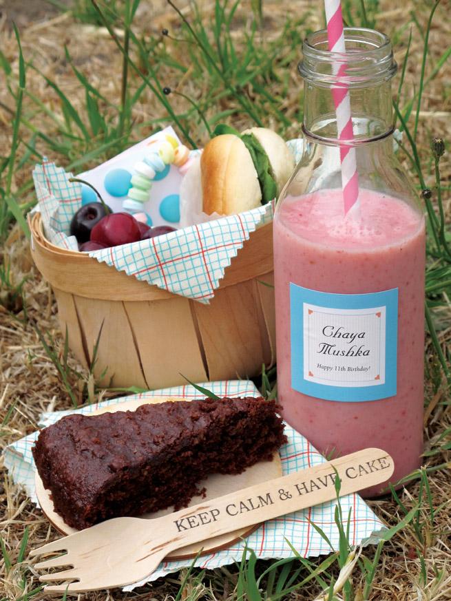 picnic-birthday-1