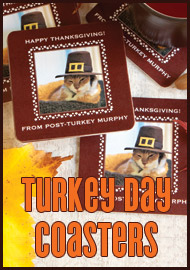 http://www.evermine.com/thanksgiving/?utm_source=blog&utm_medium=ad&utm_term=thanksgivingcoasters&utm_campaign=blogad