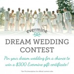 Dream Wedding Contest