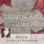 5 Days of Fall Giveaways: Day 3 | Evermine Blog | www.evermine.com