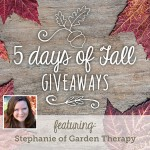 5 Days of Fall Giveaways: Day 4 | Evermine Blog | www.evermine.com