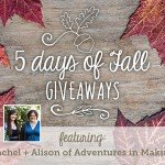 5 Days of Fall GIveaways: Day 5 | Evermine Blog | www.evermine.com