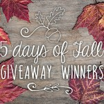 5 Days of Fall Giveaway Winners | Evermine Blog | www.evermine.com