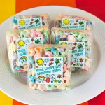Rainbow Treats for St. Patrick's Day | Evermine Blog | www.evermine.com