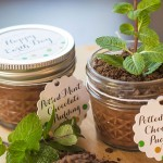 Potted Mint Chocolate Pudding | Evermine Blog | www.evermine.com #earthday