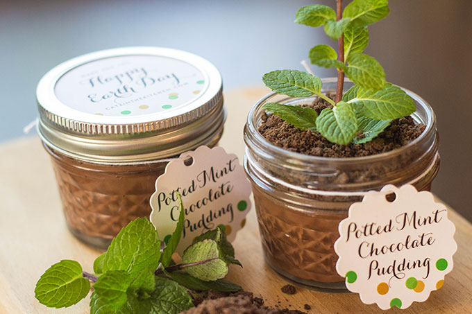 "Potted Chocolate-Mint Puddings with Cookie Crumble ""Dirt"""