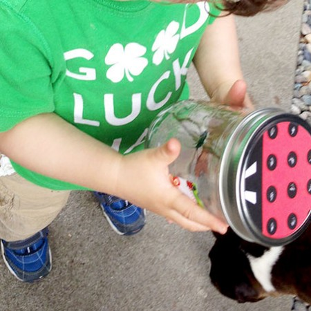 DIY Bug Collection Jar | Evermine Blog | www.evermine.com